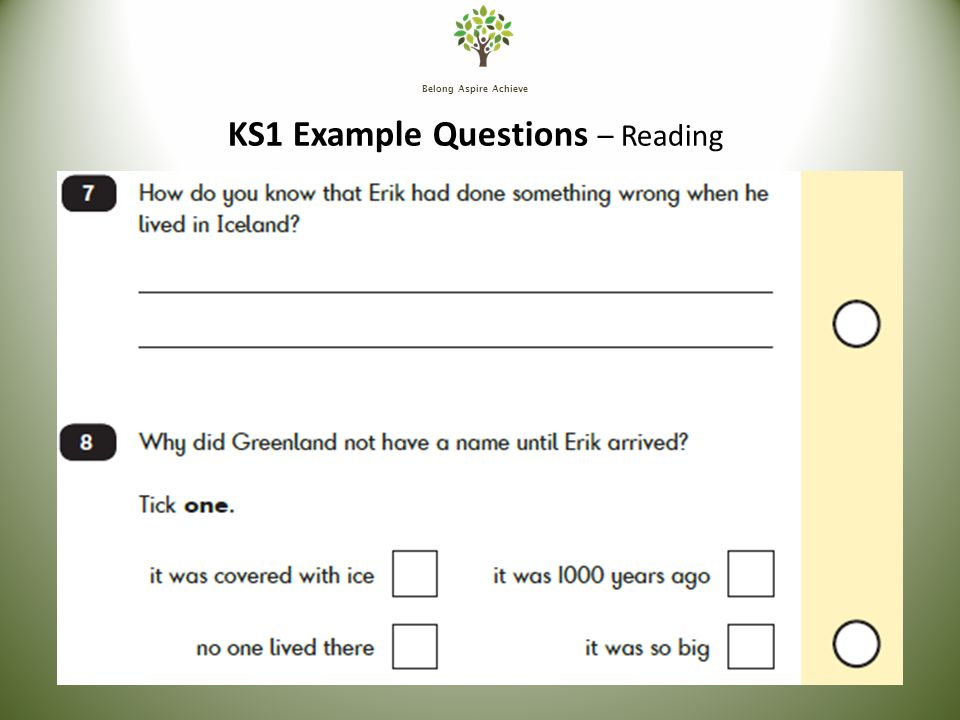 Belong Aspire Achieve KS1 Example Questions – Reading