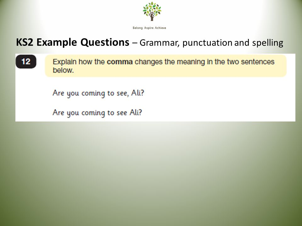 Belong Aspire Achieve KS2 Example Questions – Grammar, punctuation and spelling