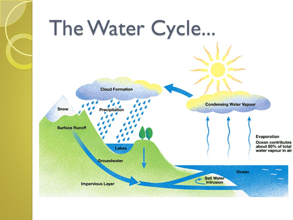 The constant cycling of water through the processes of : Evaporation&Condensation.condensa tio Water is constantly changing from (gas liquid) and back again.