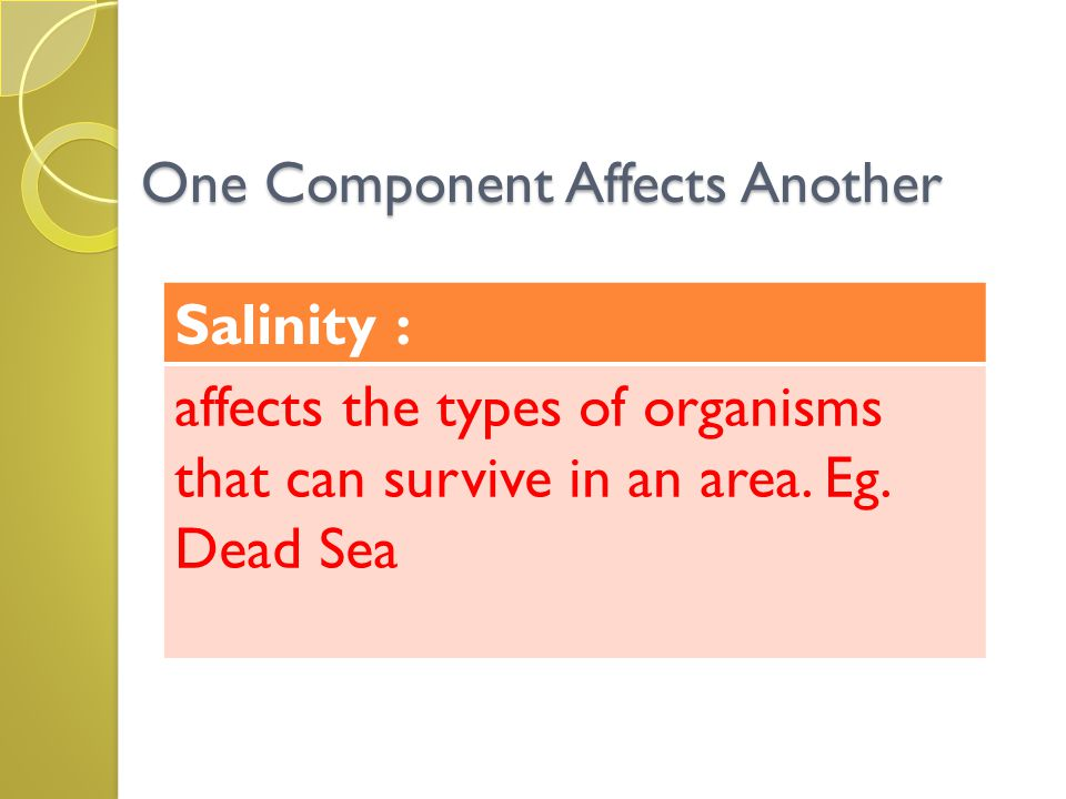 One Component Affects Another Salinity : affects the types of organisms that can survive in an area. Eg. Dead Sea