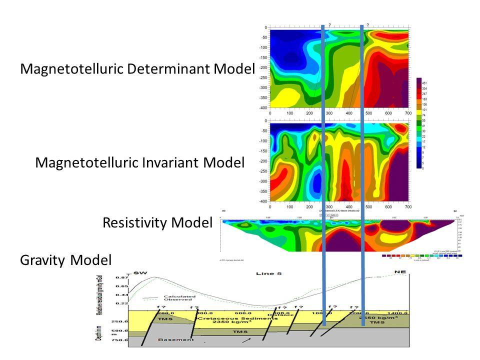 Magnetotelluric Determinant Model Magnetotelluric Invariant Model Resistivity Model Gravity Model