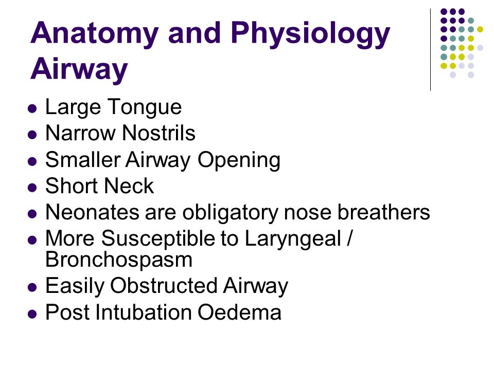Anatomy and Physiology Airway Large Tongue Narrow Nostrils Smaller Airway Opening Short Neck Neonates are obligatory nose breathers More Susceptible t