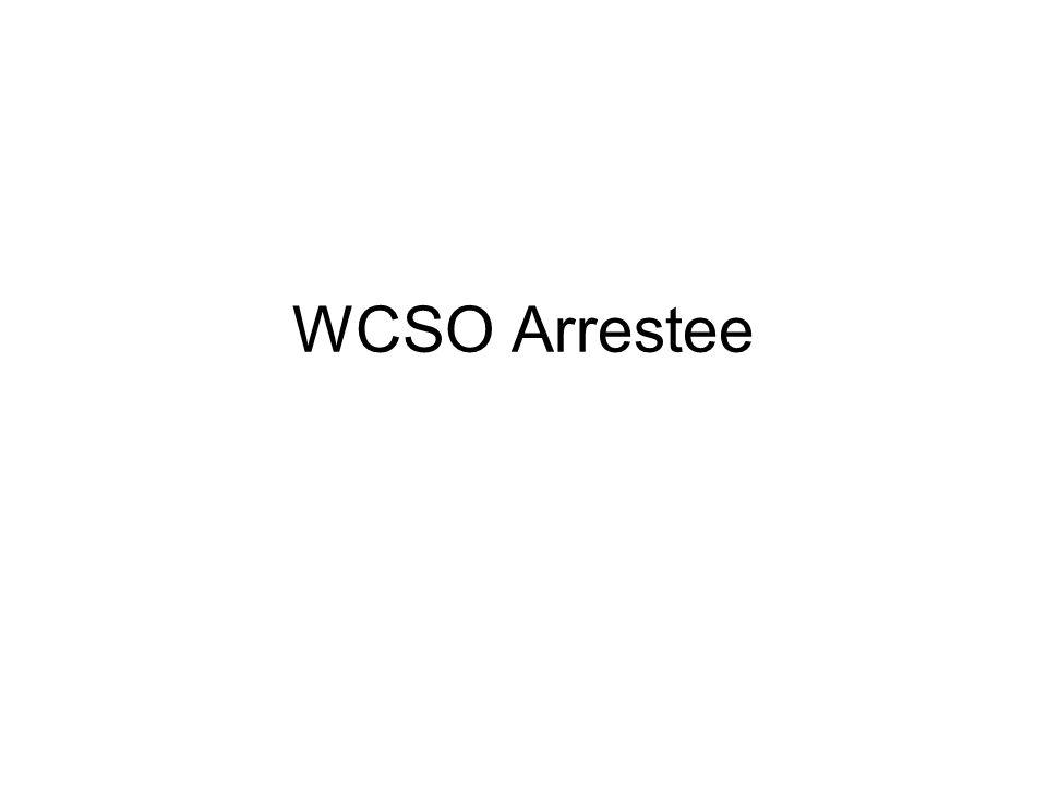 WCSO Arrestee