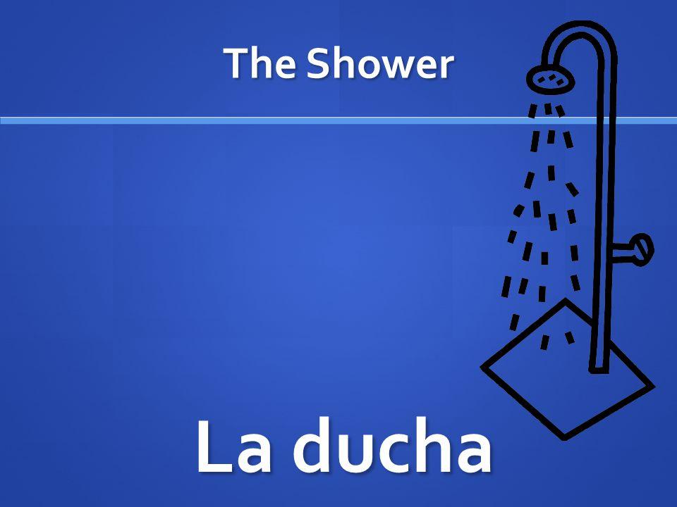 The Shower La ducha