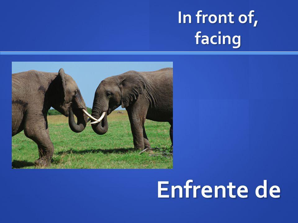 In front of, facing Enfrente de