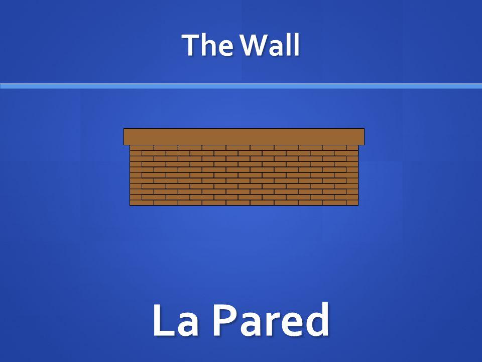 The Wall La Pared