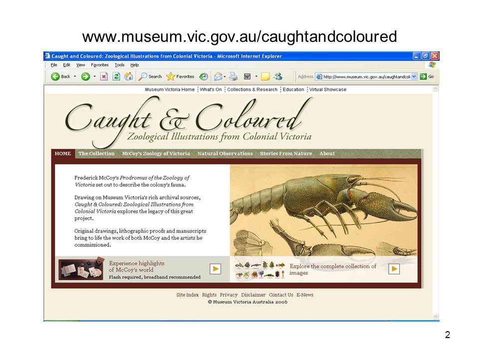 2 www.museum.vic.gov.au/caughtandcoloured