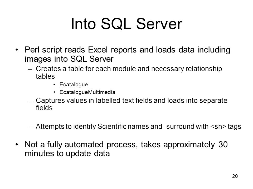 20 Into SQL Server Perl script reads Excel reports and loads data including images into SQL Server –Creates a table for each module and necessary relationship tables Ecatalogue EcatalogueMultimedia –Captures values in labelled text fields and loads into separate fields –Attempts to identify Scientific names and surround with tags Not a fully automated process, takes approximately 30 minutes to update data
