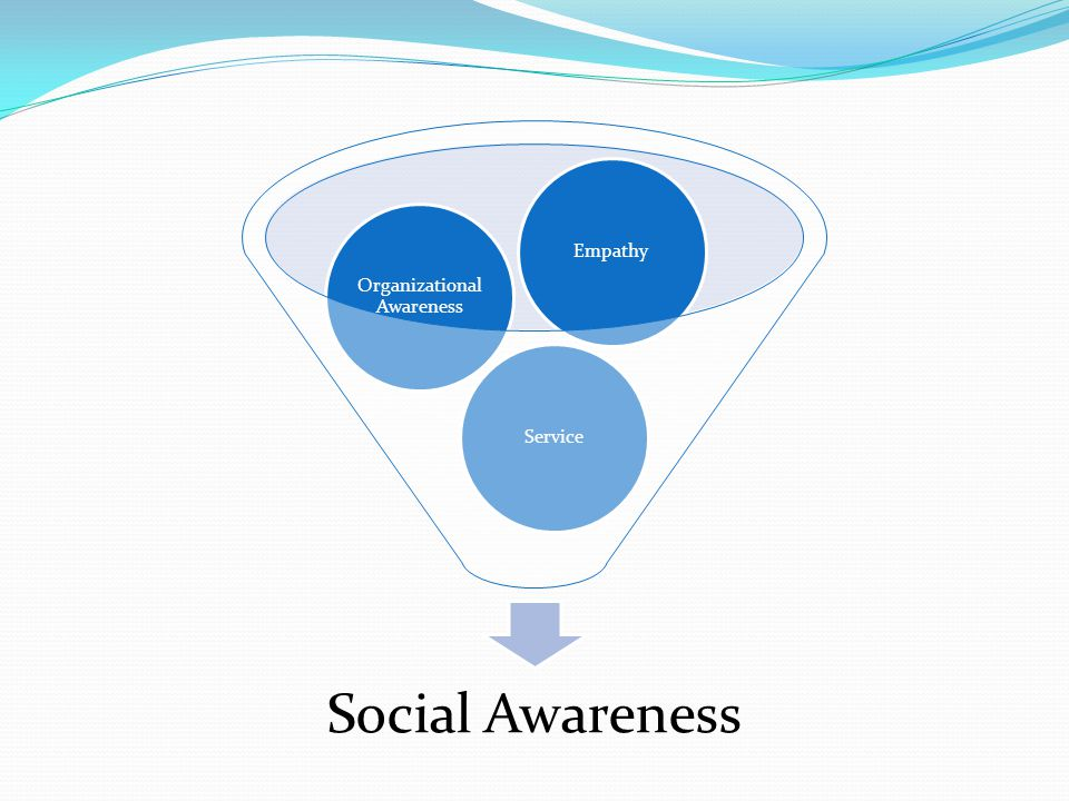 Social Awareness Service Organizational Awareness Empathy