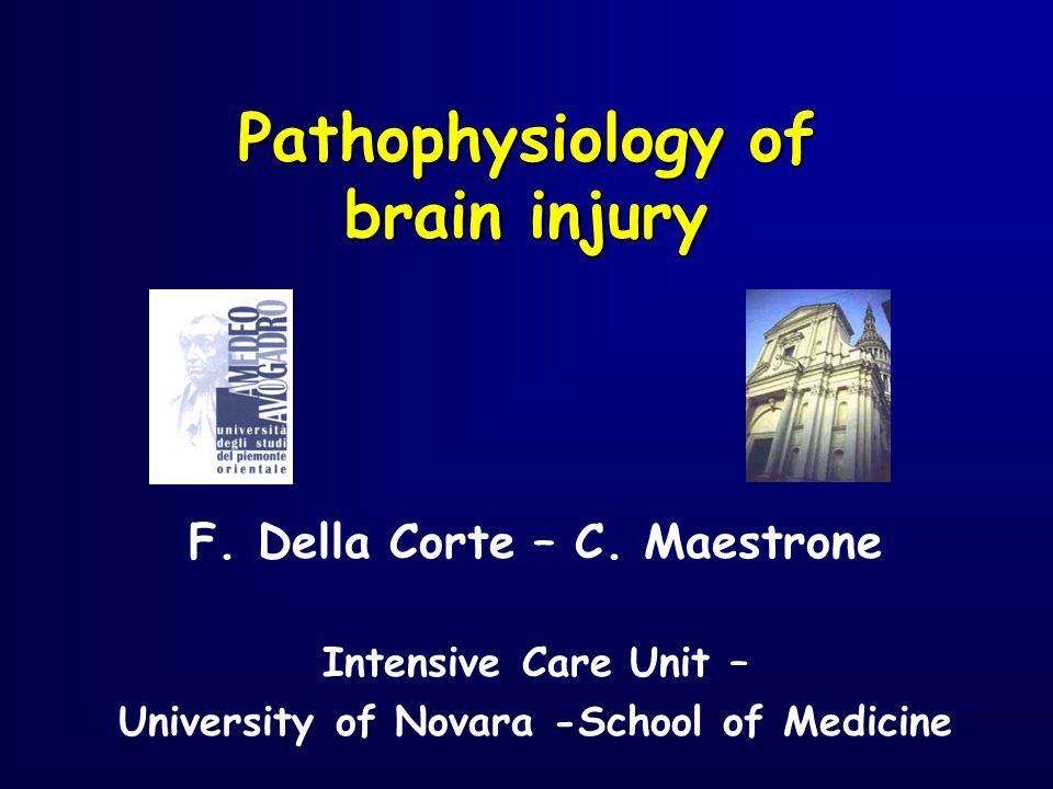F. Della Corte – C. Maestrone Intensive Care Unit – University of Novara -School of Medicine Pathophysiology of brain injury