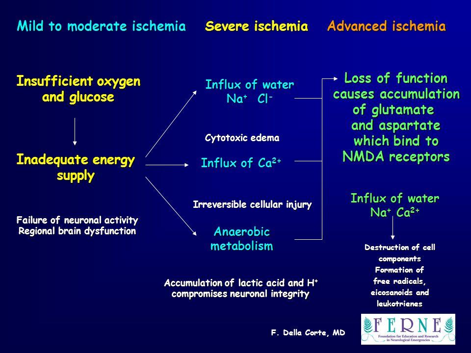 F. Della Corte, MD Mild to moderate ischemia Severe ischemia Advanced ischemia Insufficient oxygen and glucose Inadequate energy supply Failure of neu