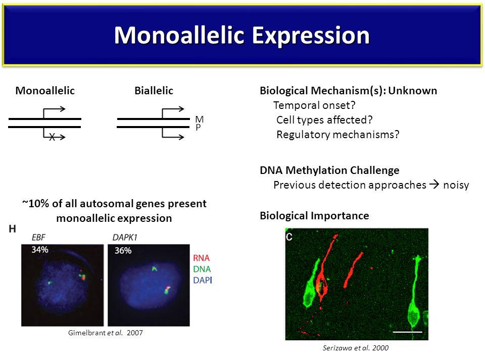Monoallelic Expression Serizawa et al.