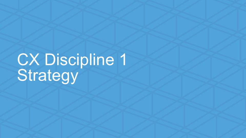 We help small businesses succeed. CX Discipline 1 Strategy