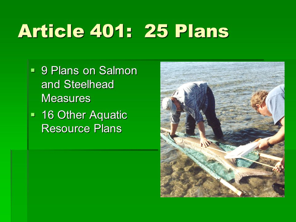 Article 401: 25 Plans  9 Plans on Salmon and Steelhead Measures  16 Other Aquatic Resource Plans