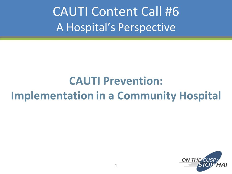 CAUTI Content Call #6 A Hospital's Perspective CAUTI Prevention: Implementation in a Community Hospital 1