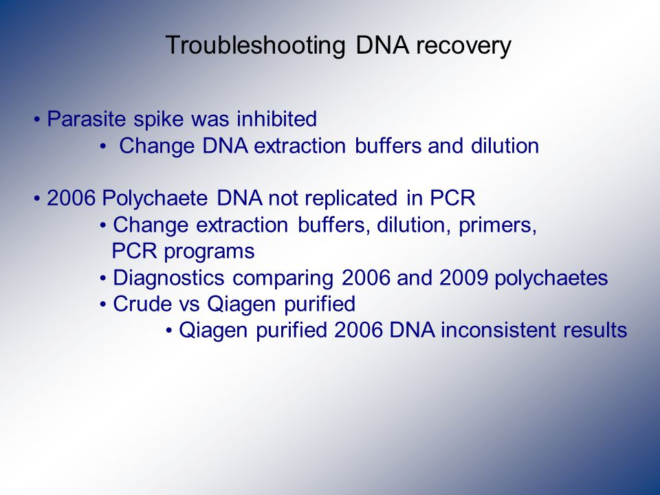 Troubleshooting DNA recovery Parasite spike was inhibited Change DNA extraction buffers and dilution 2006 Polychaete DNA not replicated in PCR Change extraction buffers, dilution, primers, PCR programs Diagnostics comparing 2006 and 2009 polychaetes Crude vs Qiagen purified Qiagen purified 2006 DNA inconsistent results