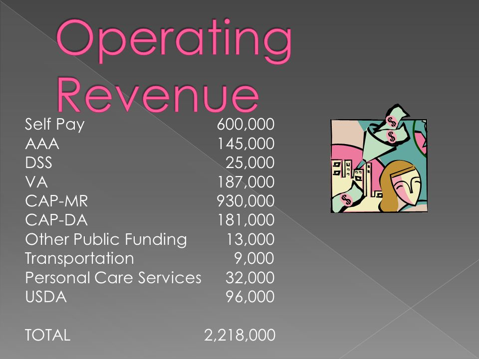 Self Pay600,000 AAA145,000 DSS 25,000 VA187,000 CAP-MR930,000 CAP-DA181,000 Other Public Funding 13,000 Transportation 9,000 Personal Care Services 32,000 USDA 96,000 TOTAL 2,218,000