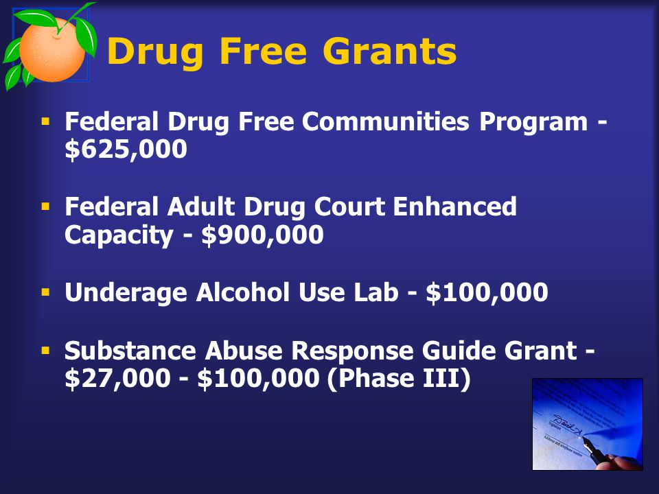  Federal Drug Free Communities Program - $625,000  Federal Adult Drug Court Enhanced Capacity - $900,000  Underage Alcohol Use Lab - $100,000  Substance Abuse Response Guide Grant - $27,000 - $100,000 (Phase III) Drug Free Grants