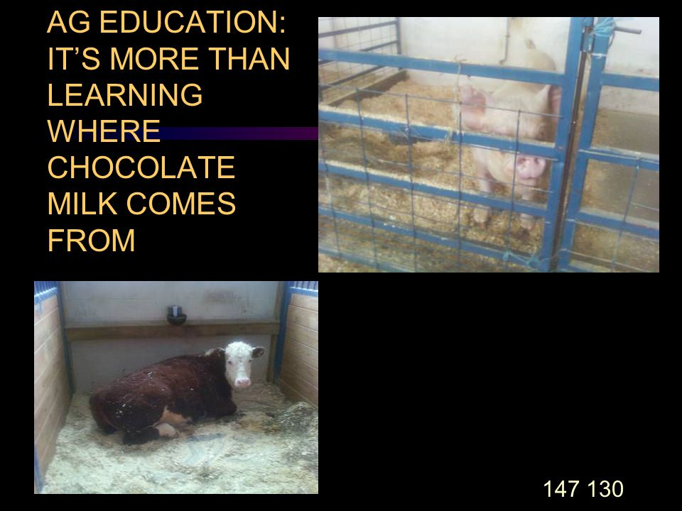 147 130 AG EDUCATION: IT'S MORE THAN LEARNING WHERE CHOCOLATE MILK COMES FROM