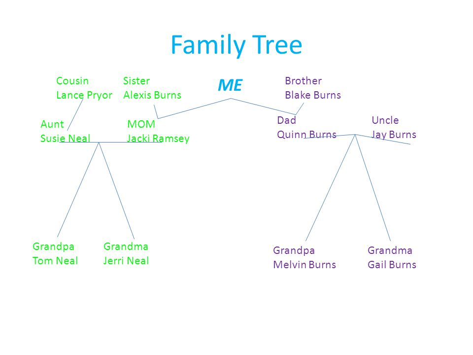 Family Tree ME MOM Jacki Ramsey Dad Quinn Burns Grandpa Tom Neal Grandma Jerri Neal Grandpa Melvin Burns Grandma Gail Burns Aunt Susie Neal Cousin Lance Pryor Uncle Jay Burns Sister Alexis Burns Brother Blake Burns