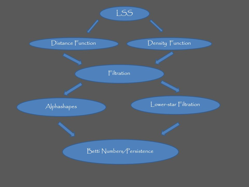 LSS Distance FunctionDensity Function Filtration Betti Numbers/Persistence Alphashapes Lower-star Filtration