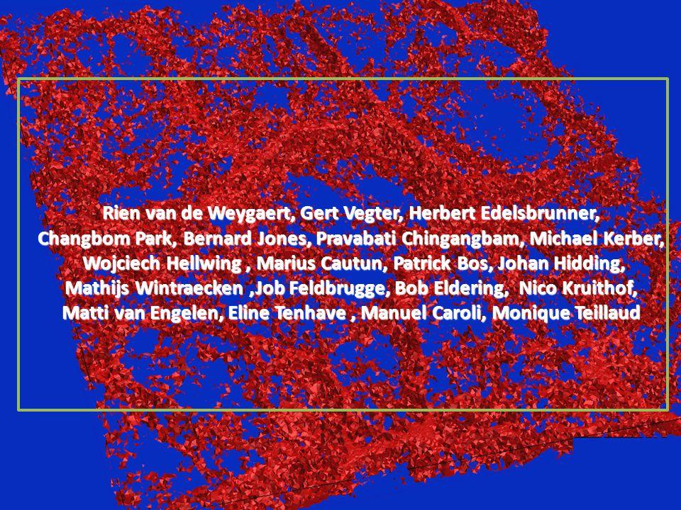 Rien van de Weygaert, Gert Vegter, Herbert Edelsbrunner, Changbom Park, Bernard Jones, Pravabati Chingangbam, Michael Kerber, Wojciech Hellwing, Mariu