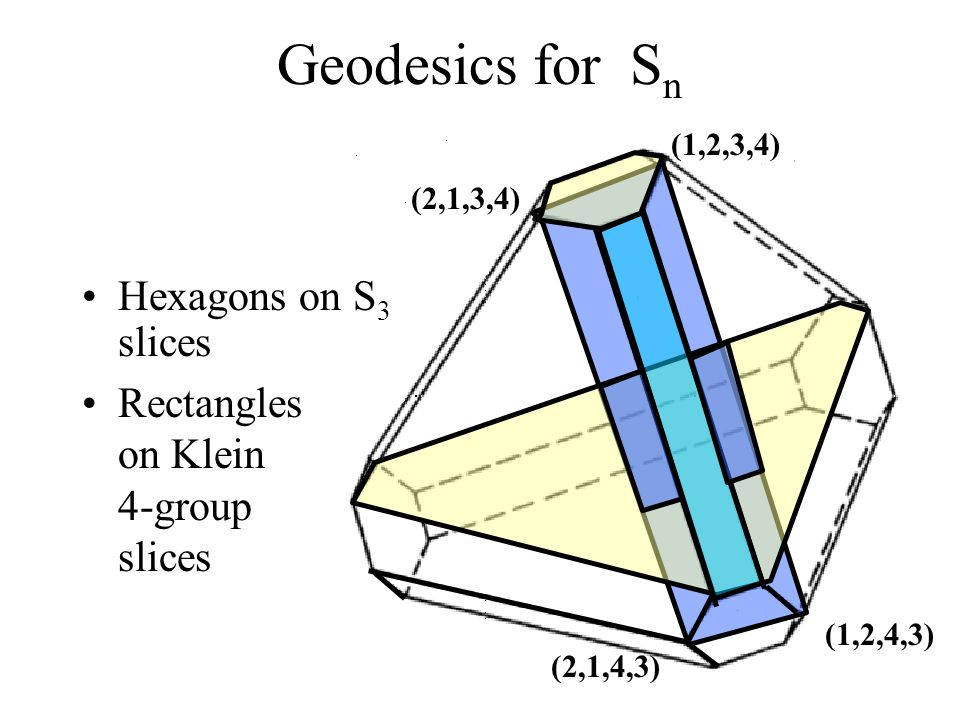 12 Geodesics for S n Hexagons on S 3 slices Rectangles on Klein 4-group slices (1,2,3,4) (1,2,4,3) (2,1,4,3) (2,1,3,4)