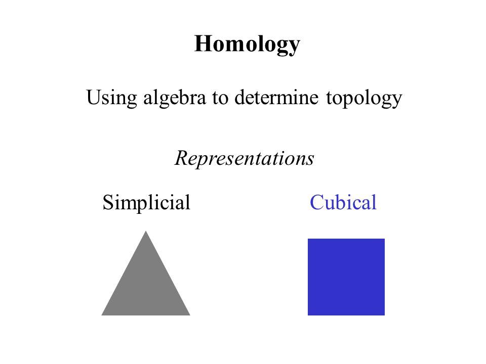 Homology Using algebra to determine topology Simplicial Cubical Representations