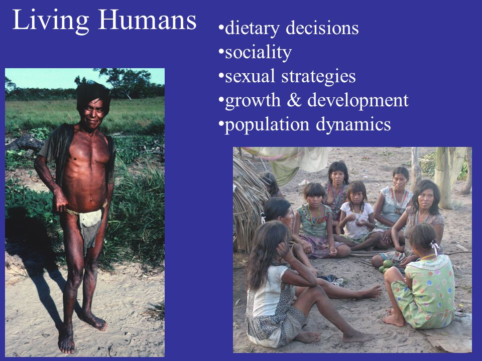 Living Humans dietary decisions sociality sexual strategies growth & development population dynamics