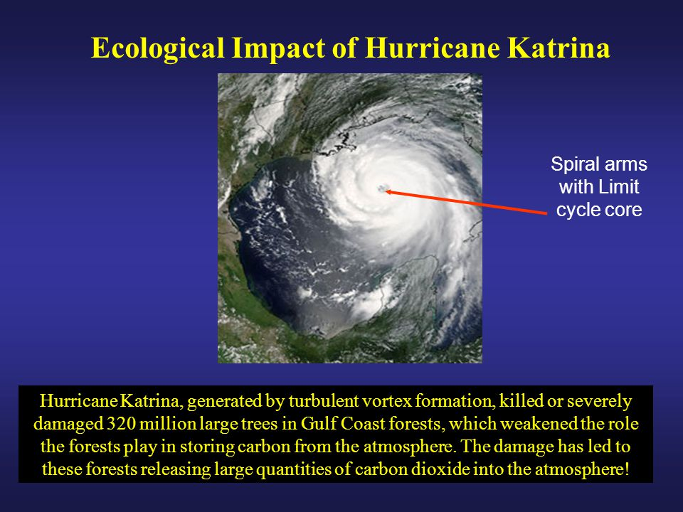 Hurricane Katrina, generated by turbulent vortex formation, killed or severely damaged 320 million large trees in Gulf Coast forests, which weakened the role the forests play in storing carbon from the atmosphere.