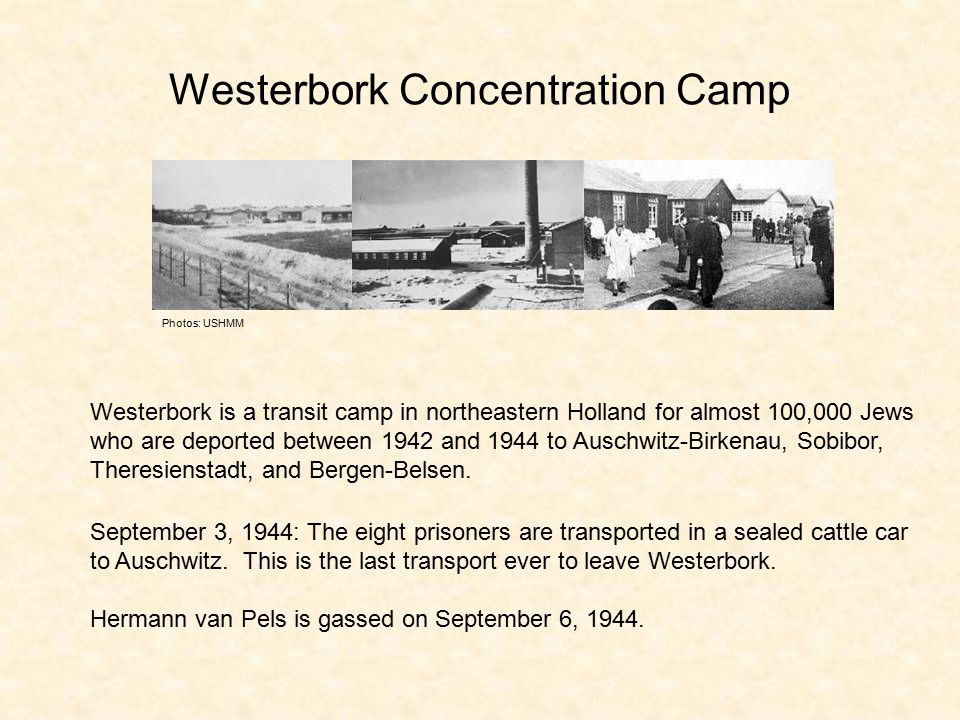 Westerbork Concentration Camp Westerbork is a transit camp in northeastern Holland for almost 100,000 Jews who are deported between 1942 and 1944 to Auschwitz-Birkenau, Sobibor, Theresienstadt, and Bergen-Belsen.