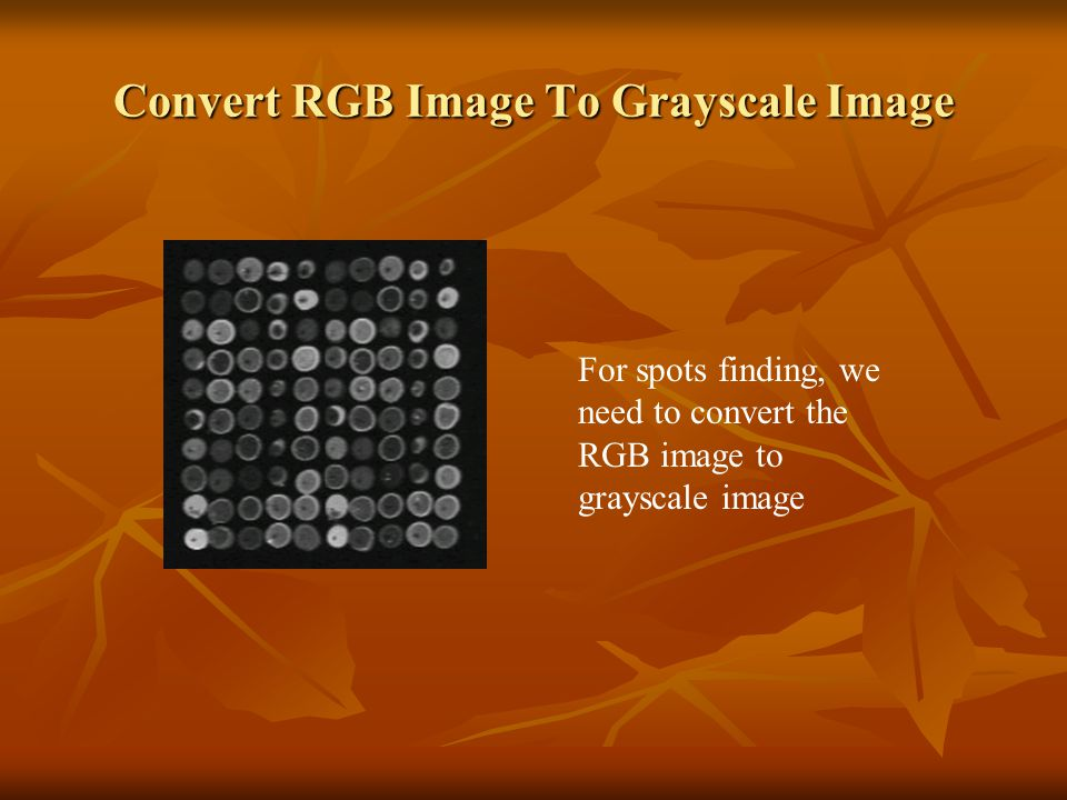 Convert RGB Image To Grayscale Image For spots finding, we need to convert the RGB image to grayscale image