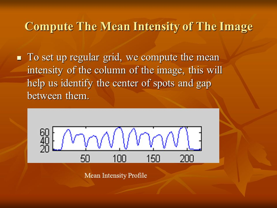 Compute The Mean Intensity of The Image To set up regular grid, we compute the mean intensity of the column of the image, this will help us identify t