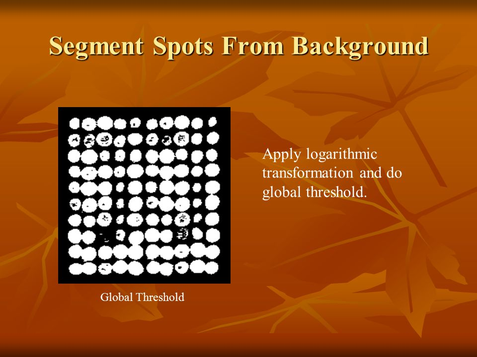 Segment Spots From Background Apply logarithmic transformation and do global threshold. Global Threshold