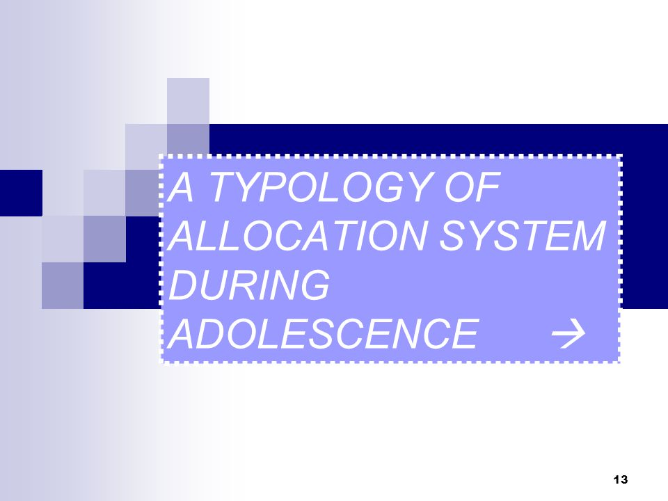 13 A TYPOLOGY OF ALLOCATION SYSTEM DURING ADOLESCENCE 