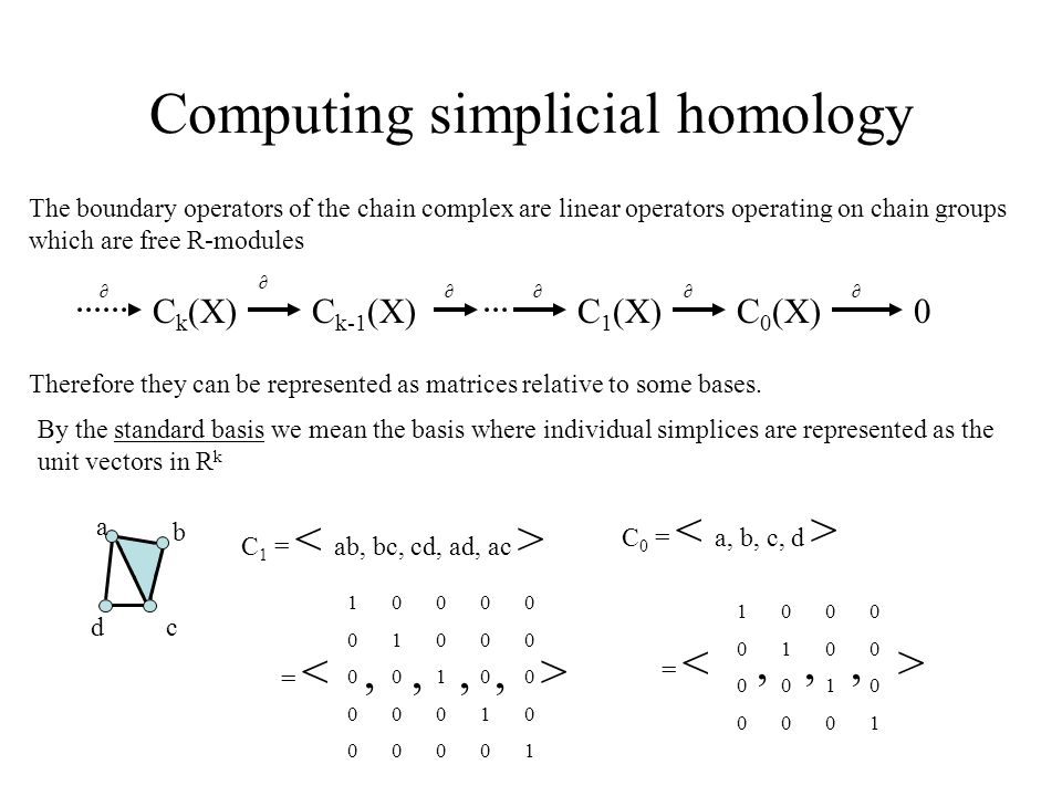 Computing simplicial homology The boundary operators of the chain complex are linear operators operating on chain groups which are free R-modules Therefore they can be represented as matrices relative to some bases.