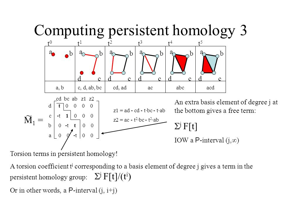 Computing persistent homology 3 a b a b cd a b cd a b cd a b cd a b cd a, bc, d, ab, bccd, adacabcacd t0t0 t1t1 t2t2 t3t3 t4t4 t5t5 t 0 0 0 0 -t 1 0 0 0 0 -t t 0 0 0 0 -t 0 0 M 1 = ~ dcbadcba cd bc ab z1 z2 z1 = ad - cd - t·bc - t·ab z2 = ac - t 2 ·bc - t 2 ·ab Torsion terms in persistent homology.