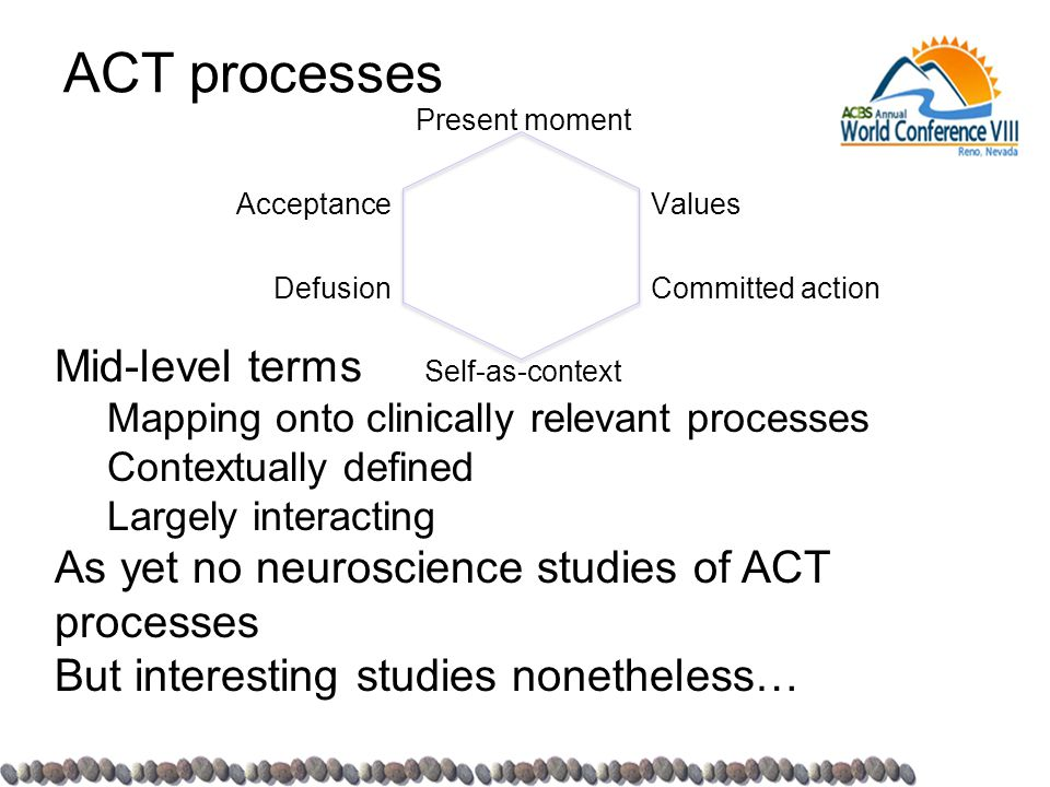 ACT processes Acceptance Defusion Present moment Self-as-context Values Committed action Mid-level terms Mapping onto clinically relevant processes Co