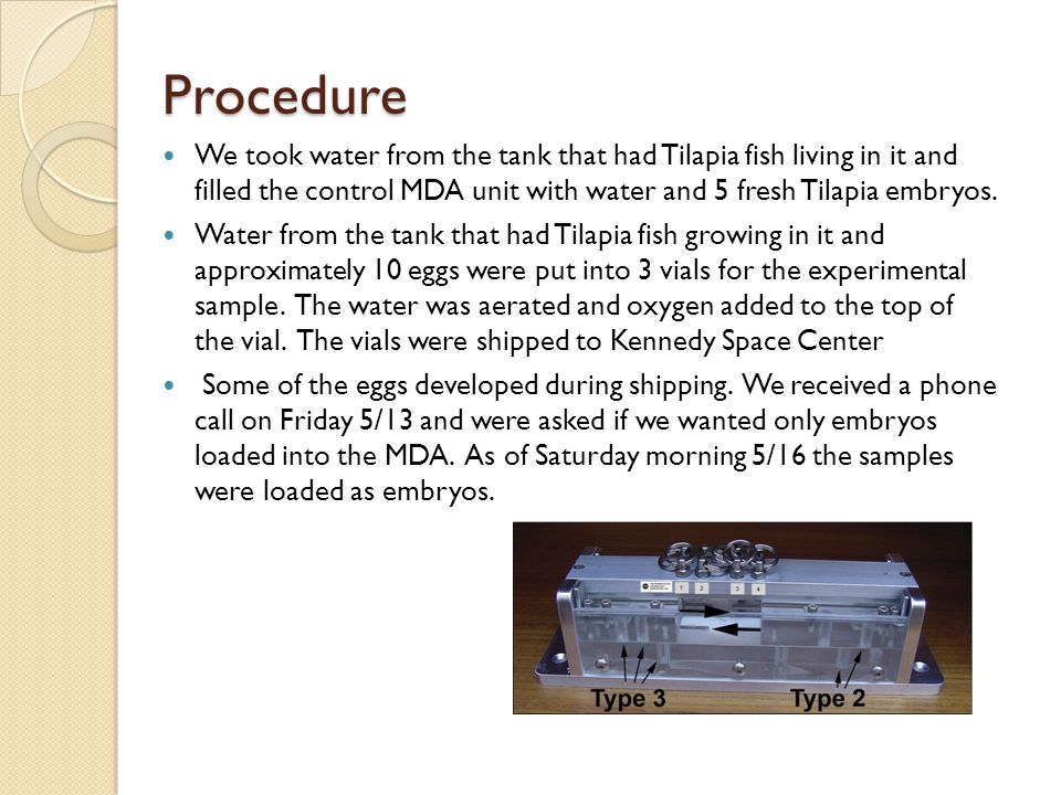 Procedure We took water from the tank that had Tilapia fish living in it and filled the control MDA unit with water and 5 fresh Tilapia embryos.