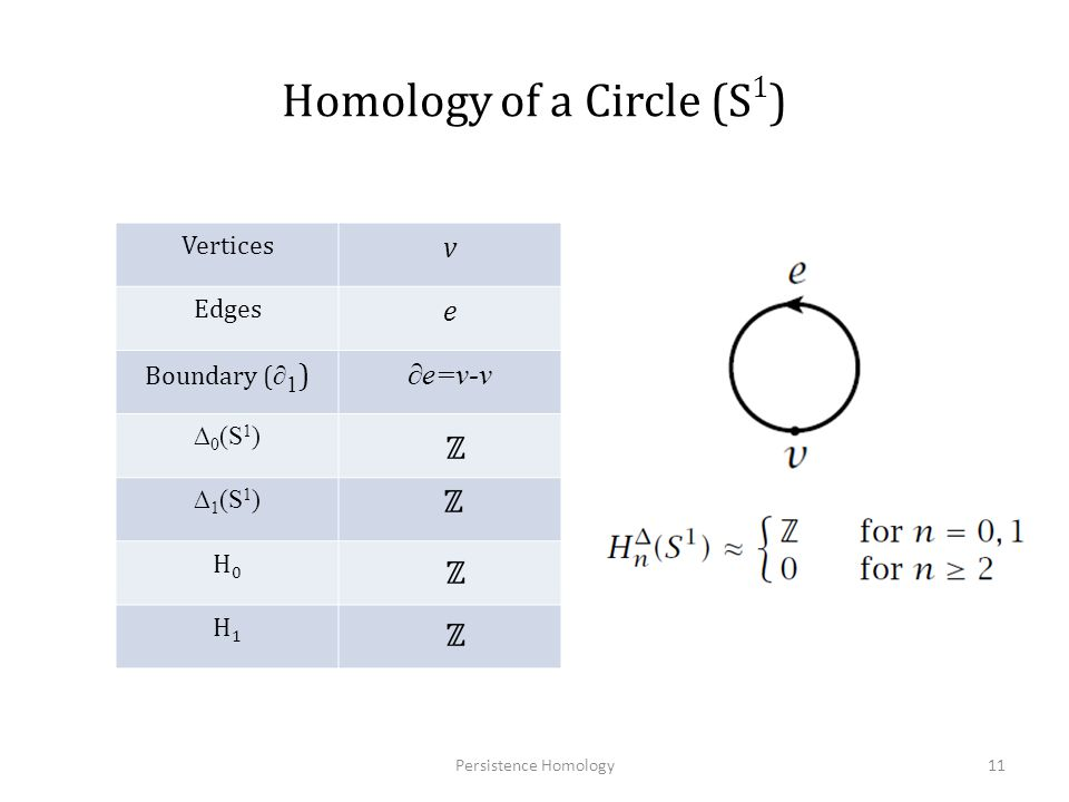 Computing Homology Cycles which generate the n dimensional holes are called homology generators Agoston Algorithm(1976) – Build incidence matrices – Reduce to smith normal form – Compute homology Generators Persistence Homology12 Computing Homology Group Generators of Images Using Irregular Graph Pyramids, S.