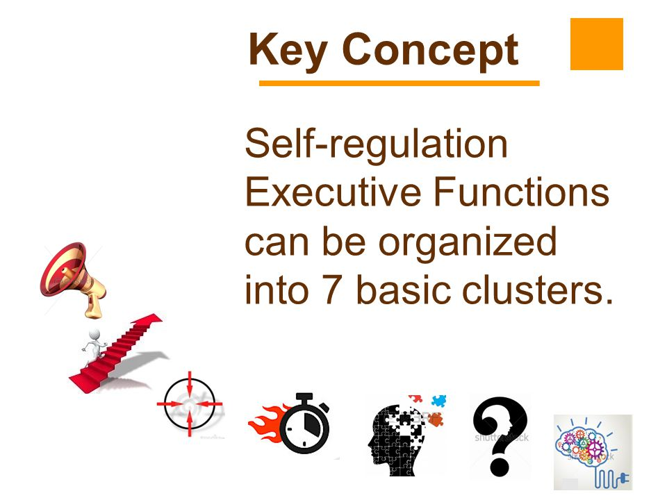 13 Self-regulation Executive Functions can be organized into 7 basic clusters. Key Concept