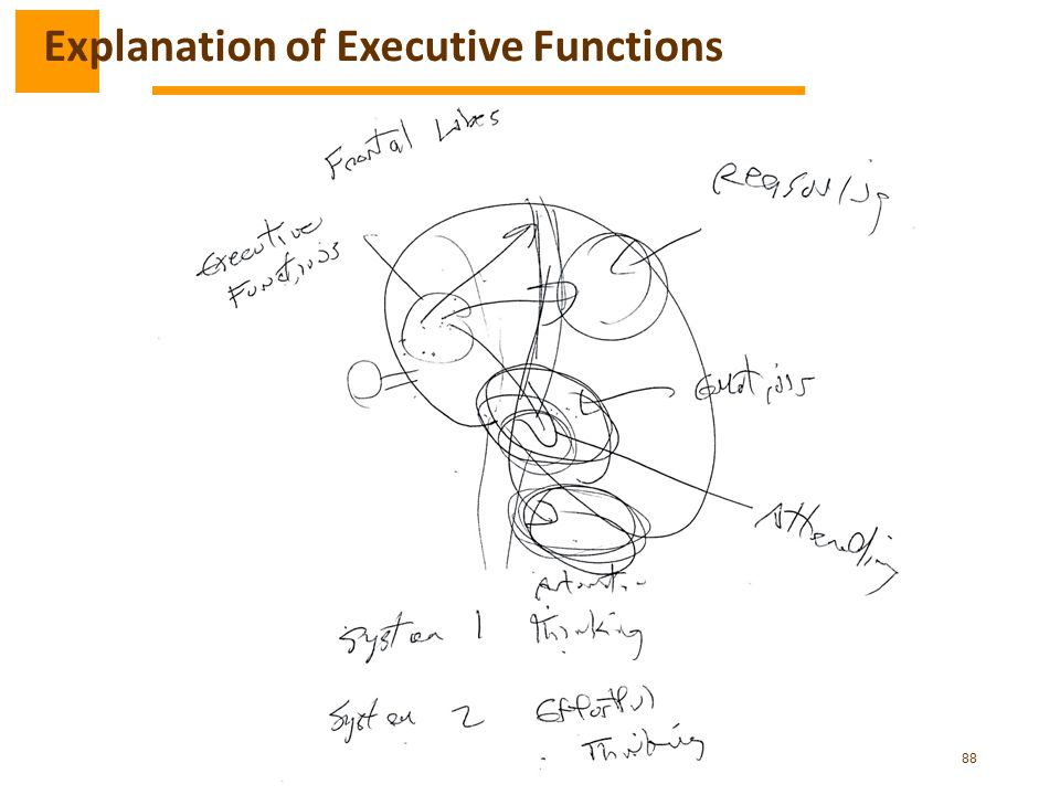 88 Explanation of Executive Functions