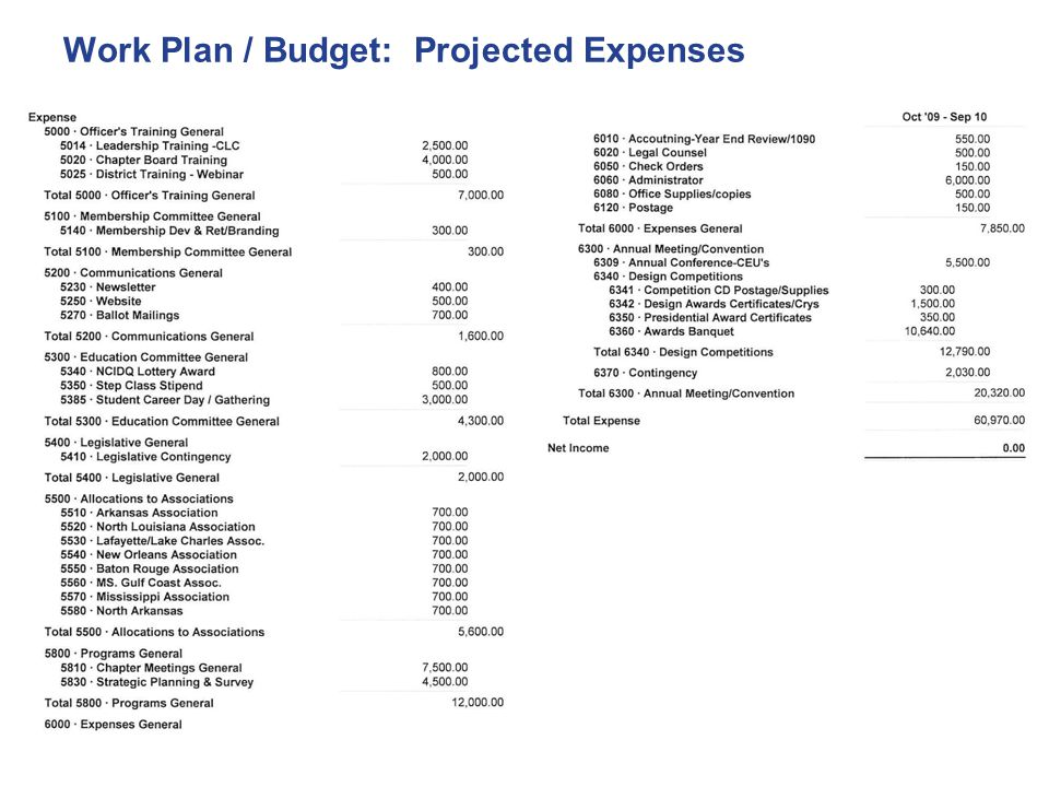 Work Plan / Budget: Projected Expenses
