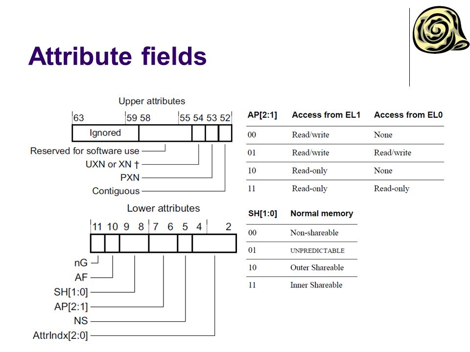 Attribute fields