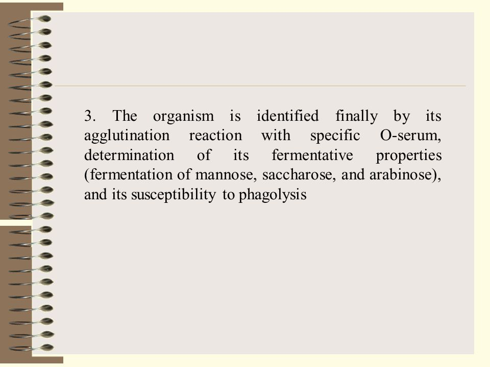 3. The organism is identified finally by its agglutination reaction with specific O-serum, determination of its fermentative properties (fermentation