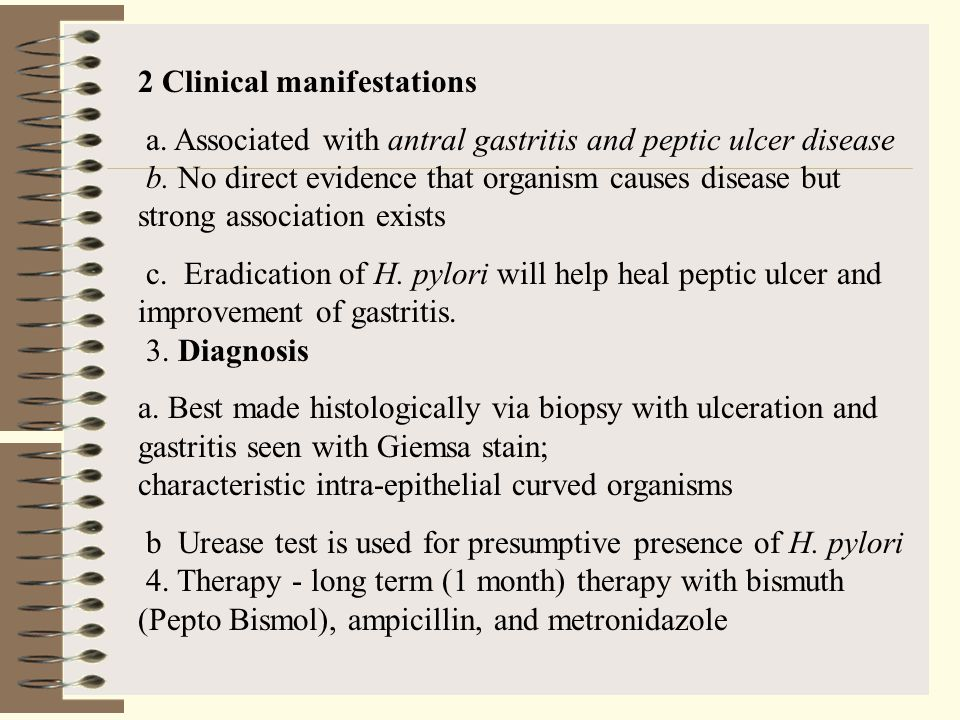 2 Clinical manifestations a. Associated with antral gastritis and peptic ulcer disease b. No direct evidence that organism causes disease but strong a