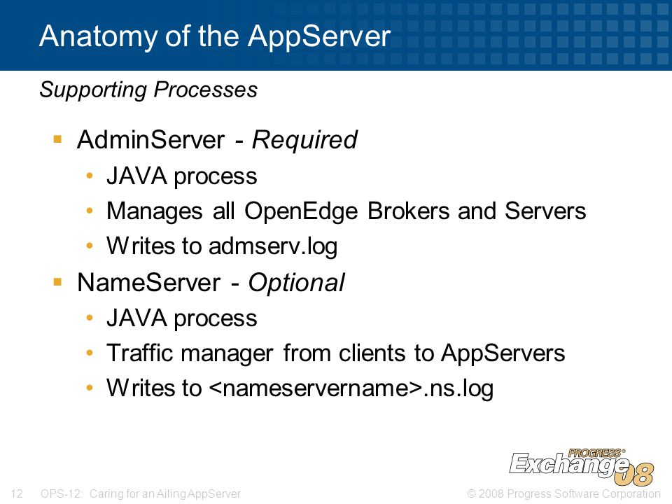 © 2008 Progress Software Corporation12 OPS-12: Caring for an Ailing AppServer Anatomy of the AppServer  AdminServer - Required JAVA process Manages all OpenEdge Brokers and Servers Writes to admserv.log  NameServer - Optional JAVA process Traffic manager from clients to AppServers Writes to.ns.log Supporting Processes