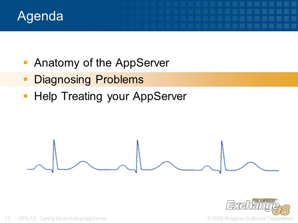 © 2008 Progress Software Corporation13 OPS-12: Caring for an Ailing AppServer Agenda  Anatomy of the AppServer  Diagnosing Problems  Help Treating your AppServer