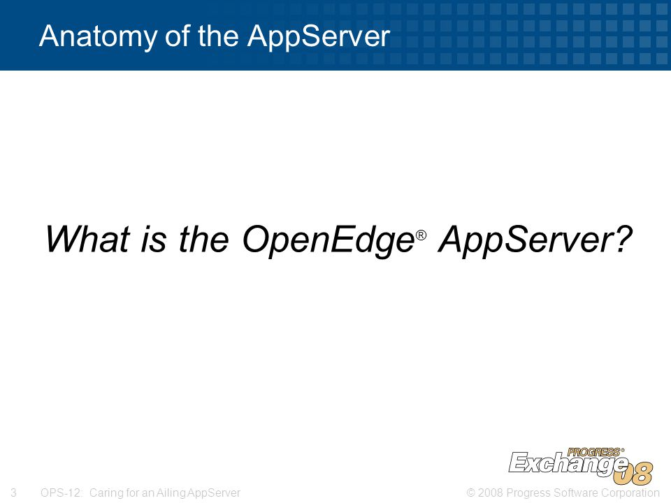 © 2008 Progress Software Corporation3 OPS-12: Caring for an Ailing AppServer Anatomy of the AppServer What is the OpenEdge ® AppServer?