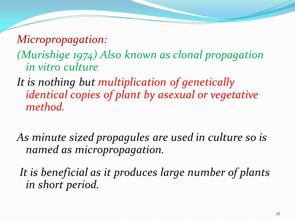 Micropropagation: (Murishige 1974) Also known as clonal propagation in vitro culture It is nothing but multiplication of genetically identical copies